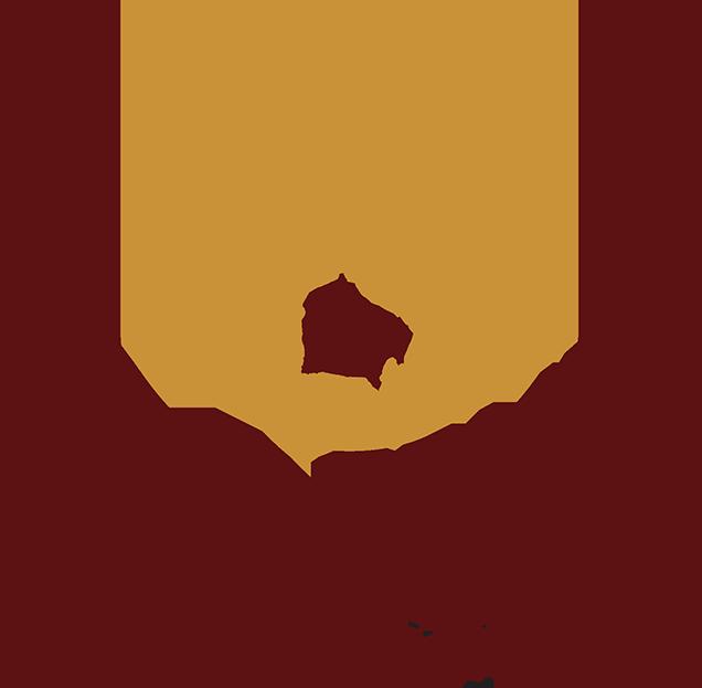 DAWN Commission Logo
