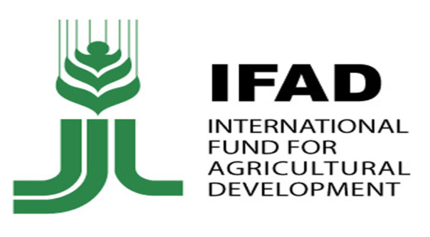 Foreign Direct Investment Alone Cannot Transform Nigeria's Agriculture – Ex IFAD President